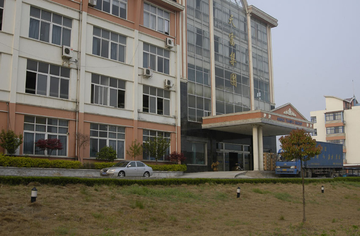 Tian Fu Group Office Building2